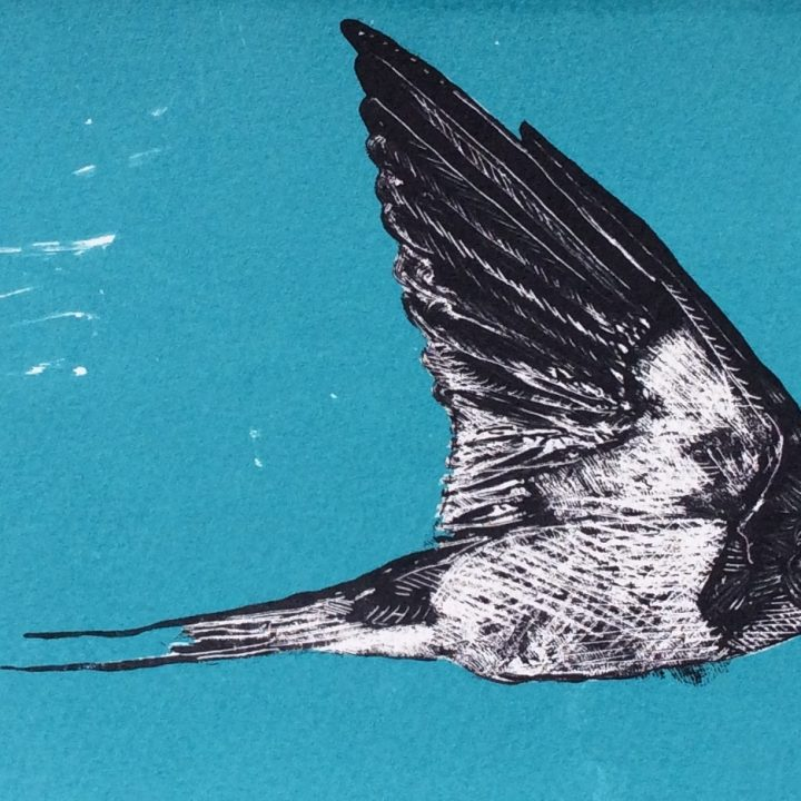 SOLD-Kevin Peden-Flying Swallow-Limited edition screen print-£90-40x20cm-A